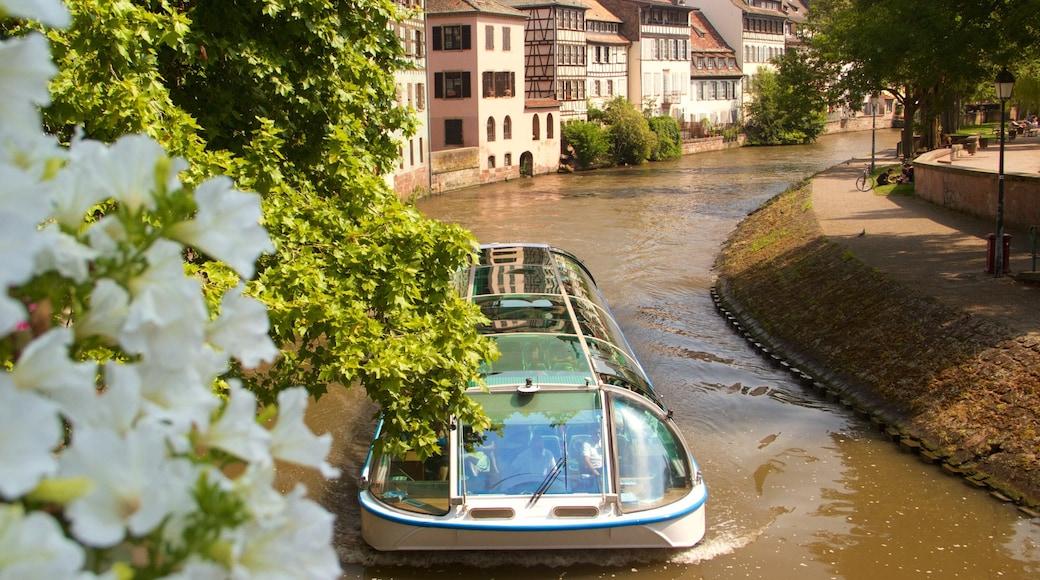 斯特拉斯堡 呈现出 河流或小溪, 花朵 和 划船