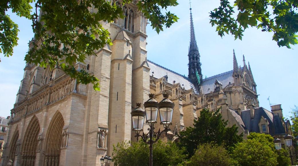 Cattedrale di Notre Dame che include architettura d\'epoca, oggetti d\'epoca e chiesa o cattedrale