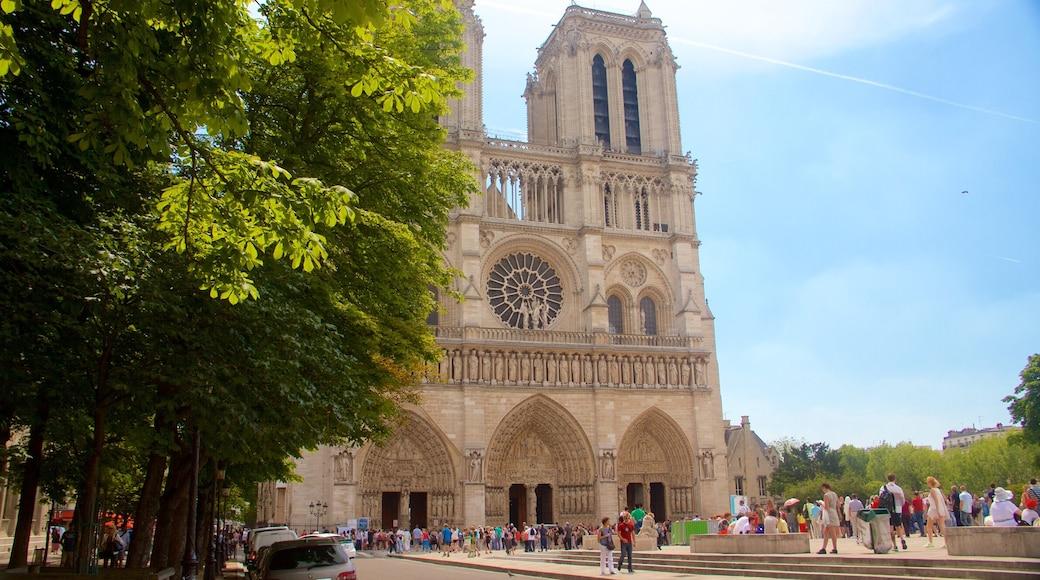 Cattedrale di Notre Dame che include chiesa o cattedrale, oggetti d\'epoca e architettura d\'epoca