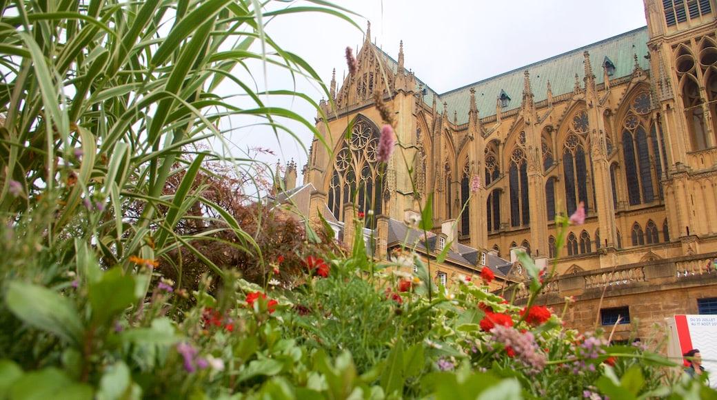 Metzin katedraali johon kuuluu kukat, perintökohteet ja vanha arkkitehtuuri