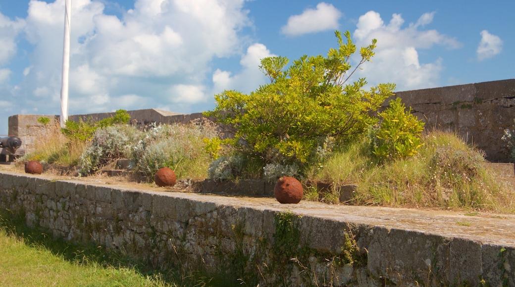 Fort National welches beinhaltet Geschichtliches