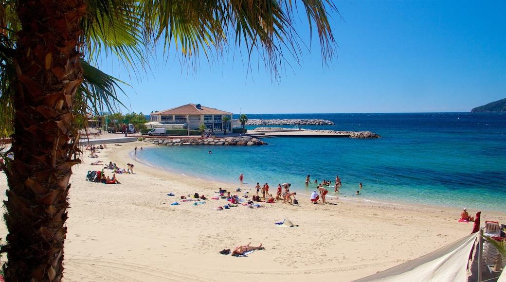 Spiaggia di Tolone caratteristiche di spiaggia e paesaggio tropicale