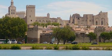 Avignon mettant en vedette patrimoine architectural, patrimoine historique et rivière ou ruisseau