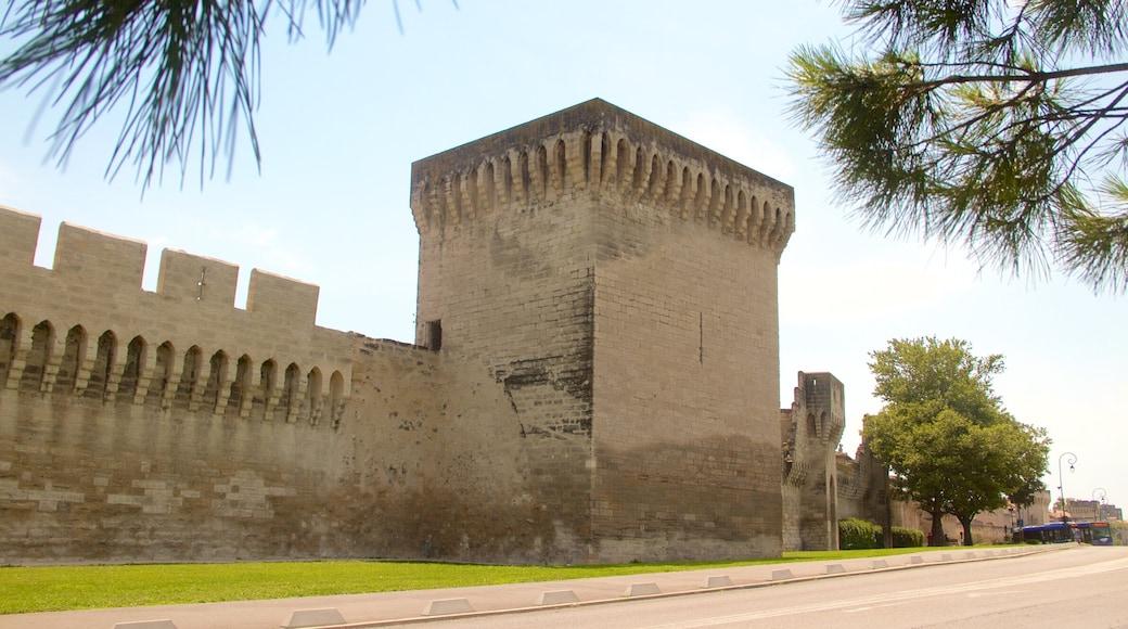 Avignon welches beinhaltet Geschichtliches