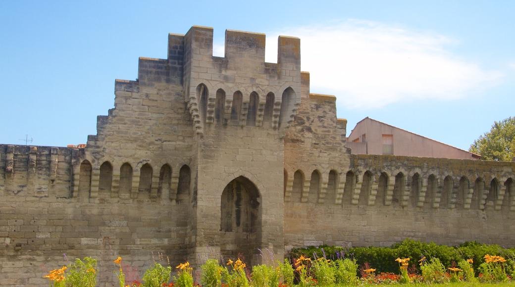 Avignon mit einem Geschichtliches
