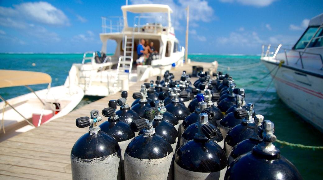 산페드로 을 특징 스쿠버, 일반 해안 전경 과 마리나