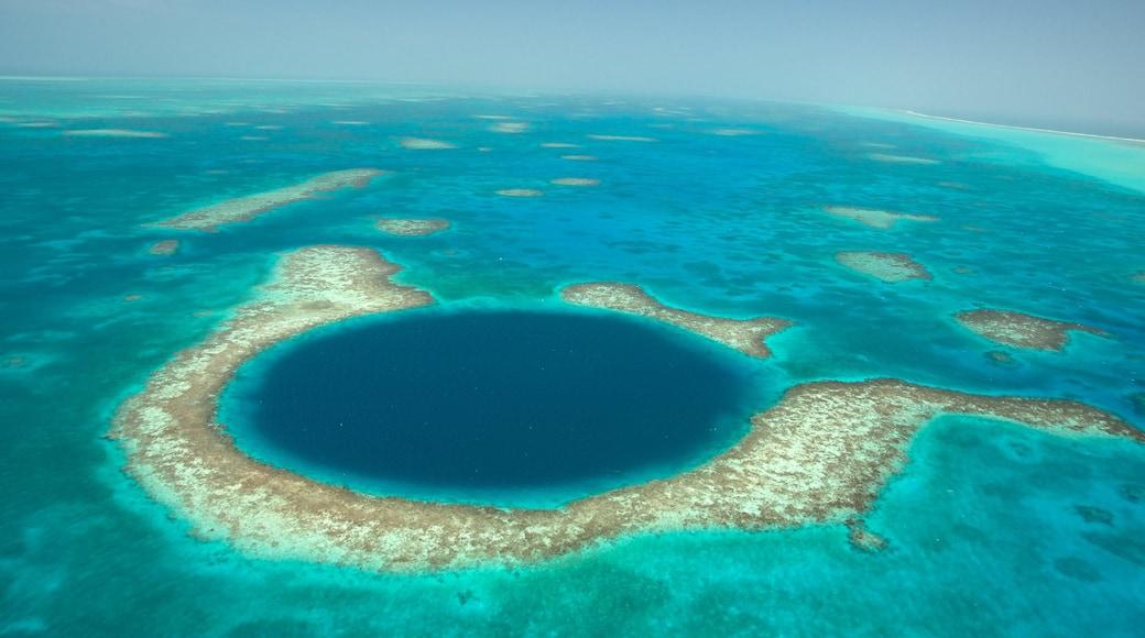 Belice mostrando coral