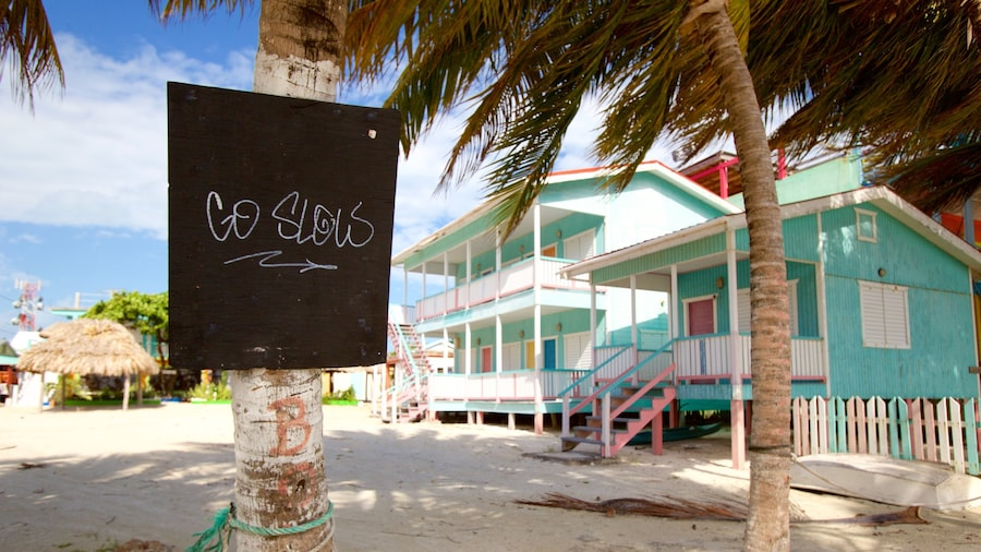 Caye Caulker featuring signage and a coastal town