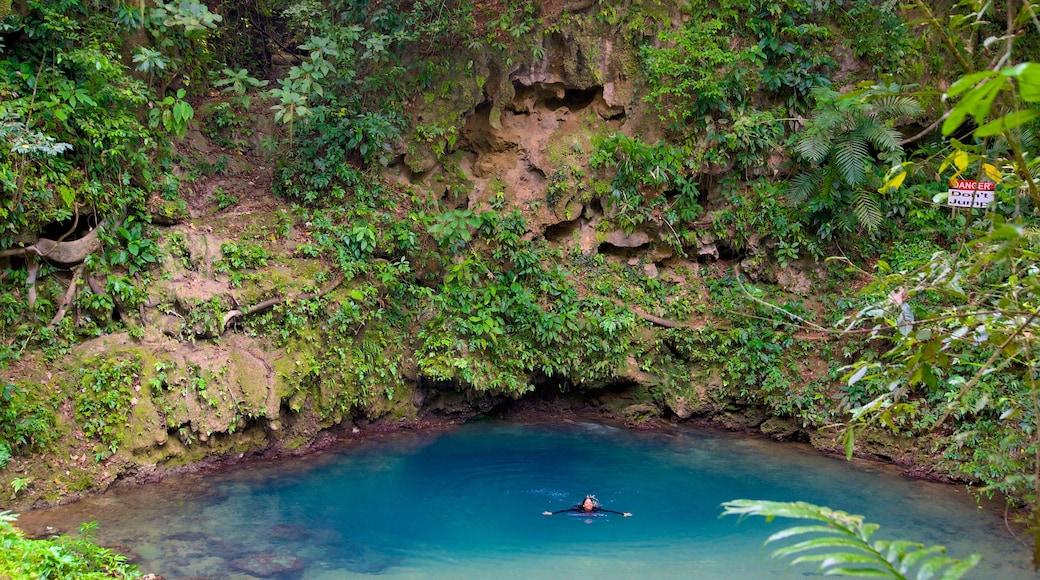 Parque Nacional Blue Hole mostrando natación, escenas tranquilas y un lago o abrevadero