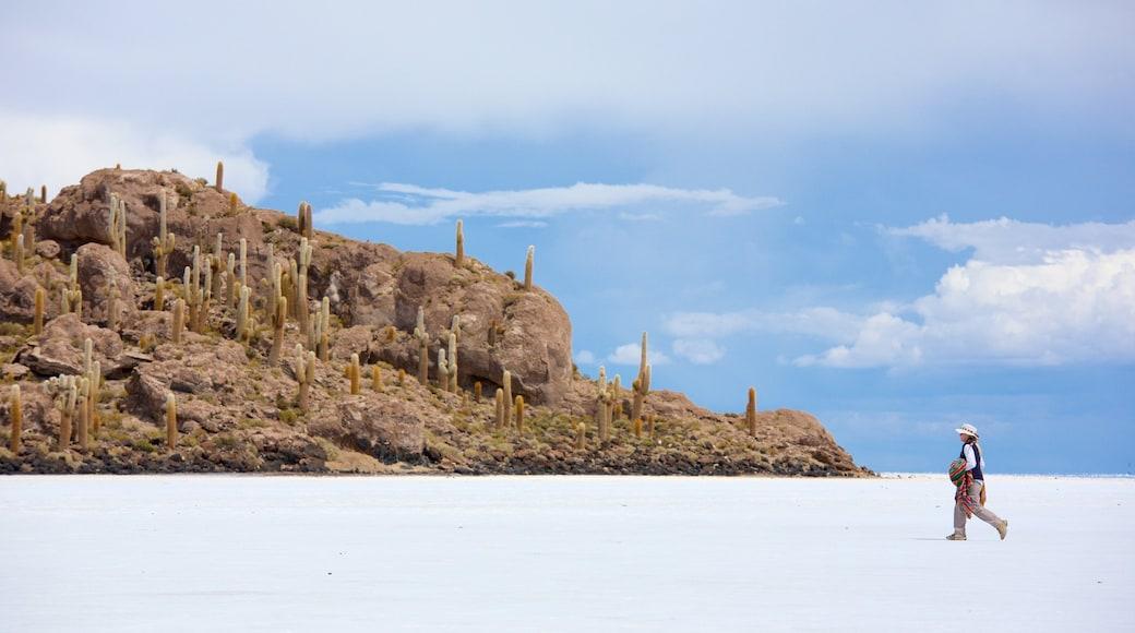 Uyuni featuring tranquil scenes