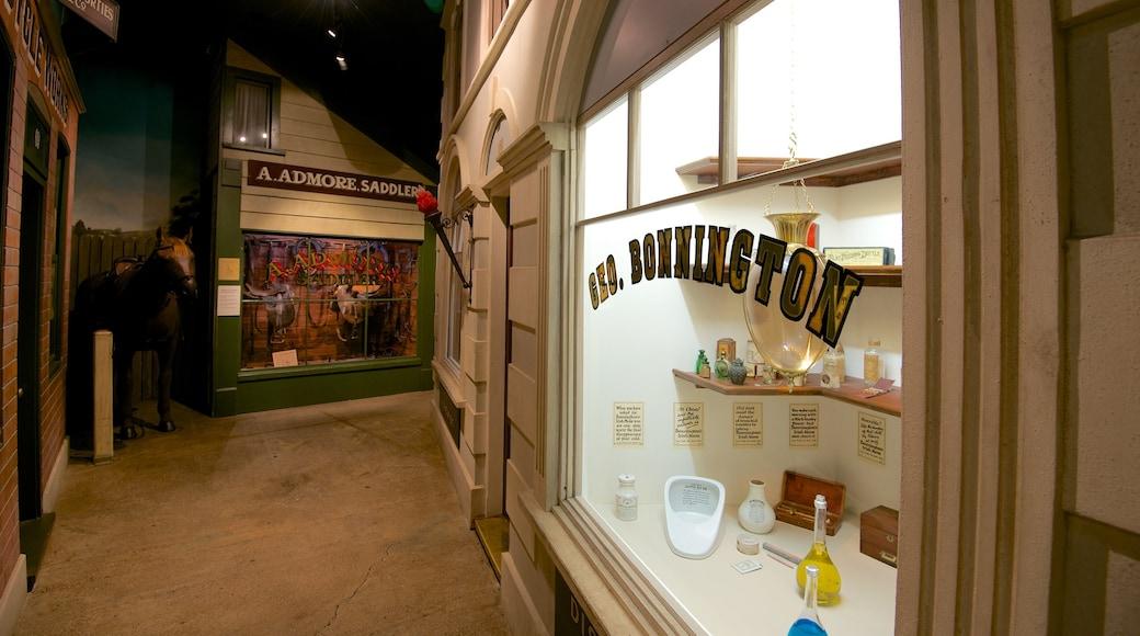 Canterbury Museum que incluye vista interna