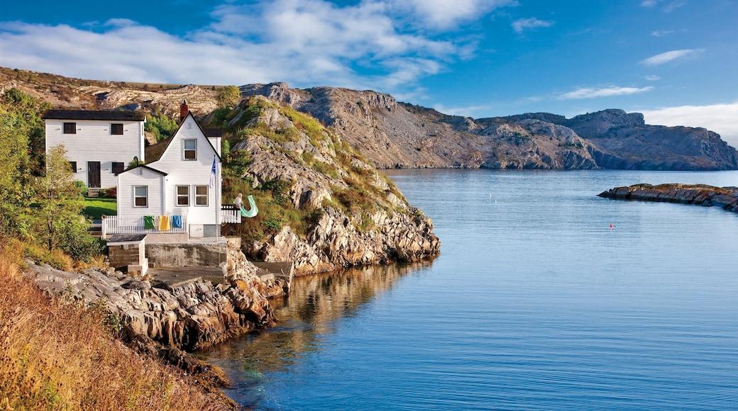 Newfoundland and Labrador which includes rugged coastline and general coastal views
