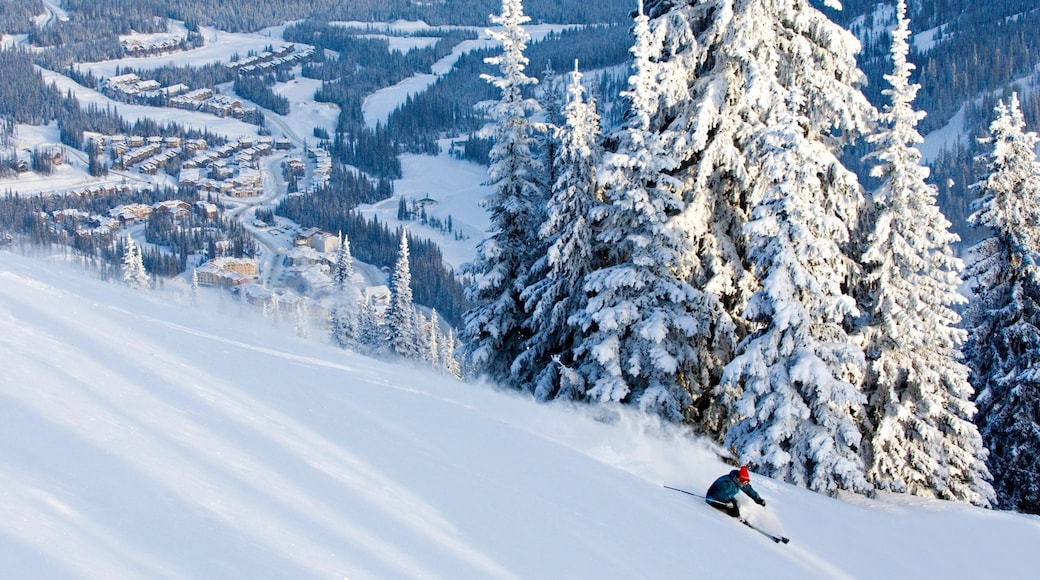 Sun Peaks featuring a small town or village, snow and snow skiing