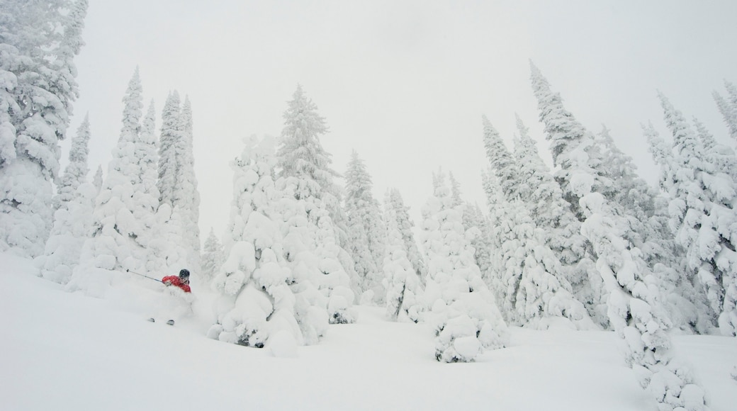 Sun Peaks featuring snow skiing and snow