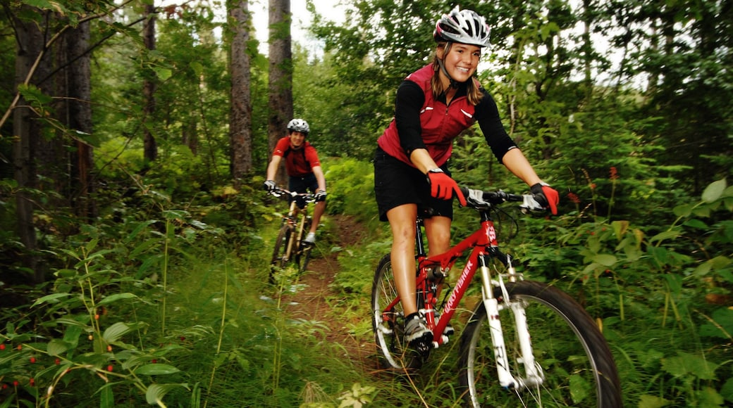 Sun Peaks showing mountain biking as well as a small group of people