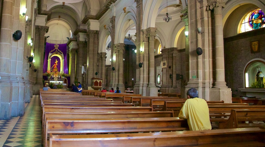 Quetzaltenango Cathedral which includes interior views and a church or cathedral as well as an individual male