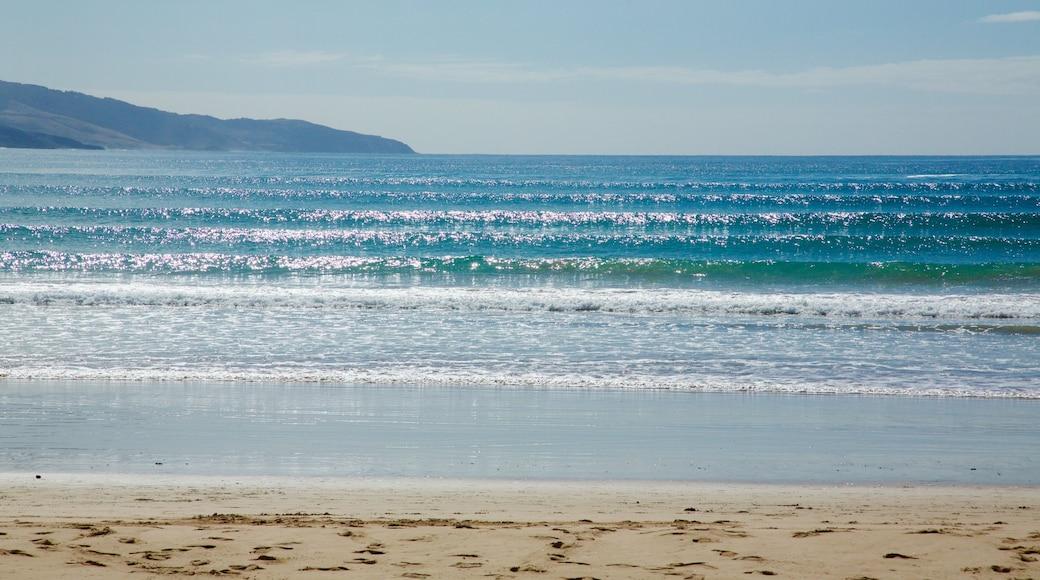Apollo Bay which includes a sandy beach