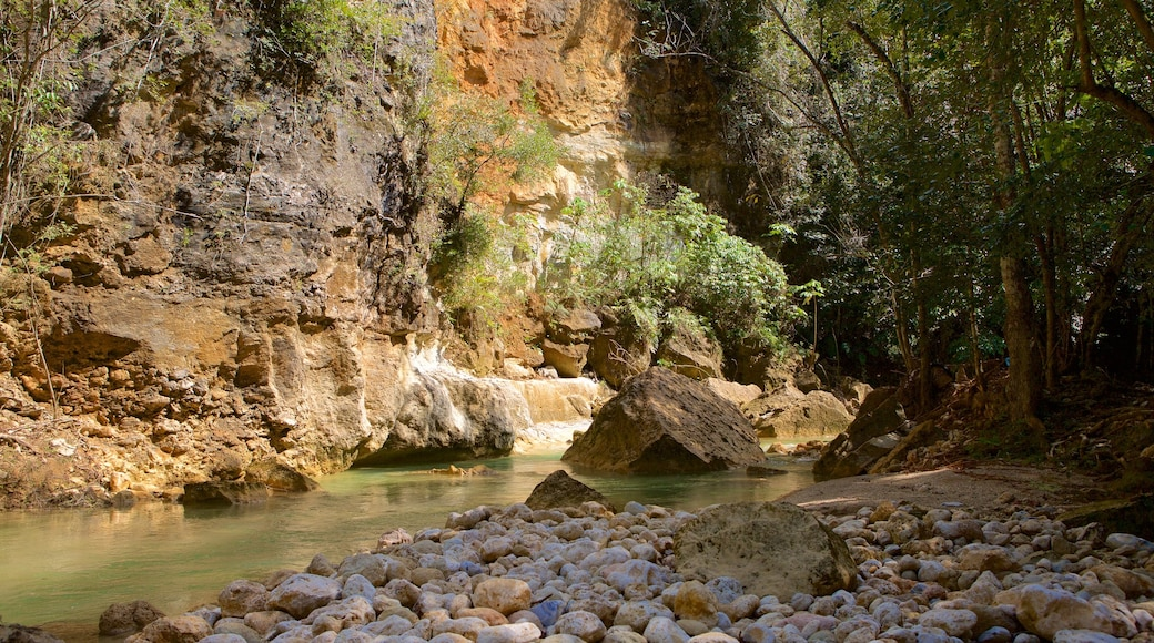 El Salto del Limon featuring a gorge or canyon and a river or creek