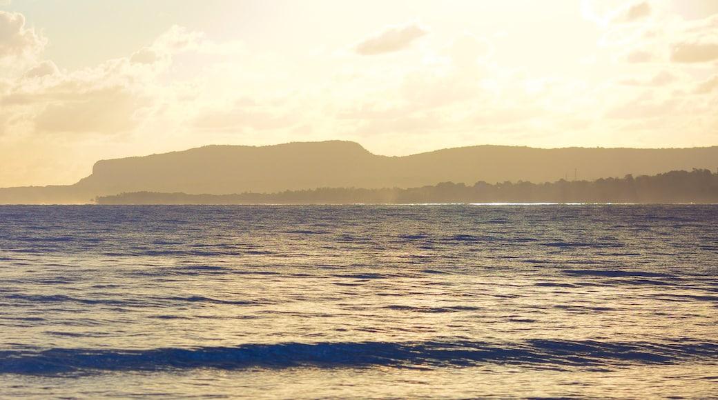 Rincon Beach which includes general coastal views