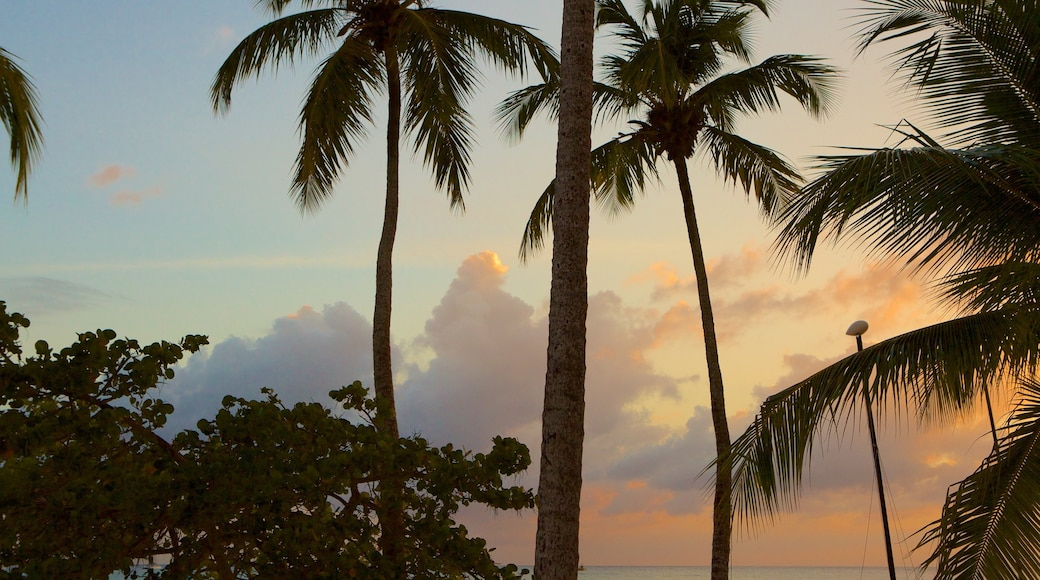 Playa Bayahibe mit einem tropische Szenerien und Sonnenuntergang