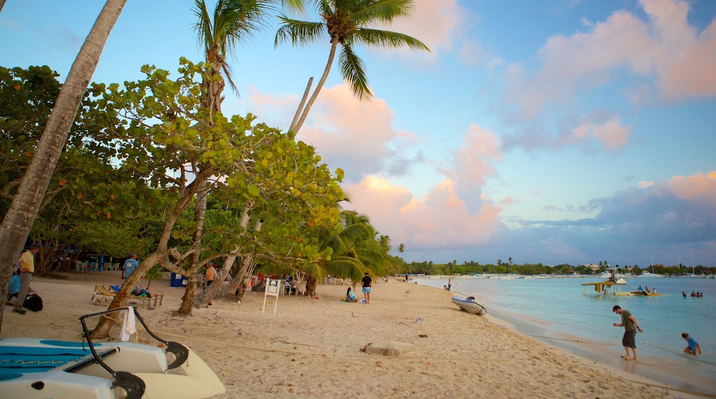 Bayahibe Beach which includes a sunset and a beach