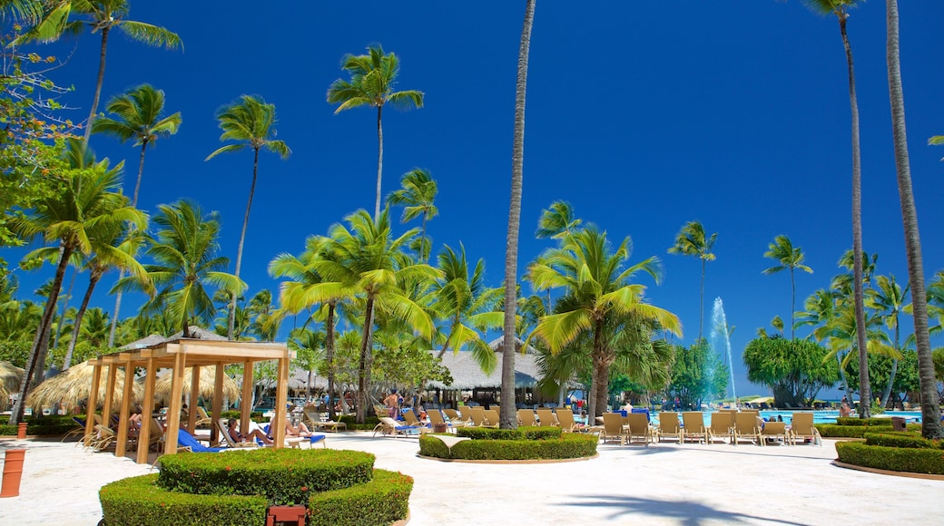 Arena Gorda Beach showing tropical scenes