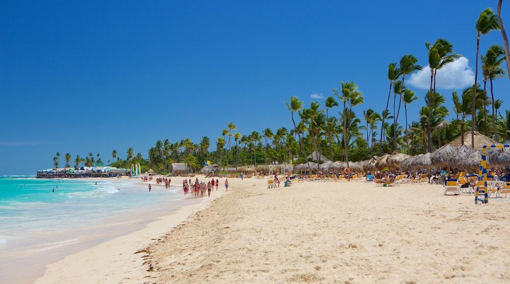 Praia de Arena Gorda que inclui uma praia e cenas tropicais