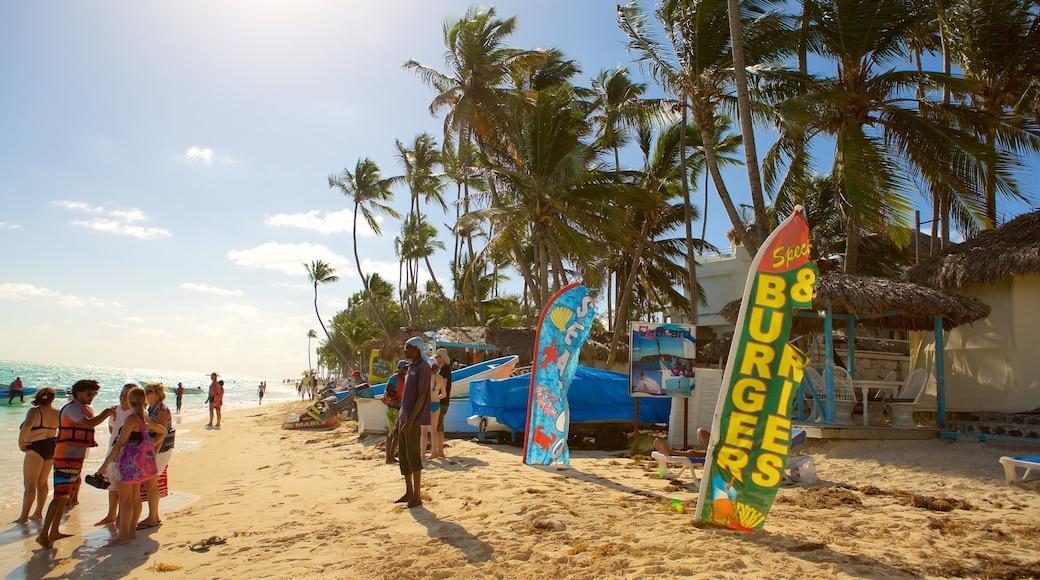 Spiaggia di Cortecito caratteristiche di spiaggia cosi come un piccolo gruppo di persone