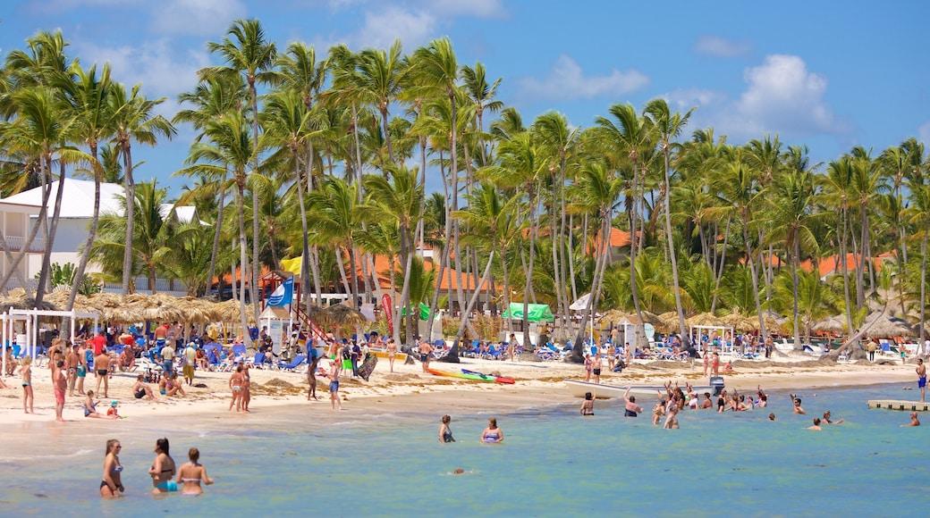 Cabeza de Toro che include spiaggia