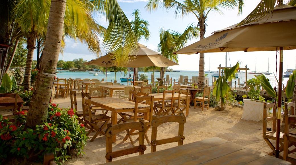 Bayahibe Beach showing outdoor eating and general coastal views