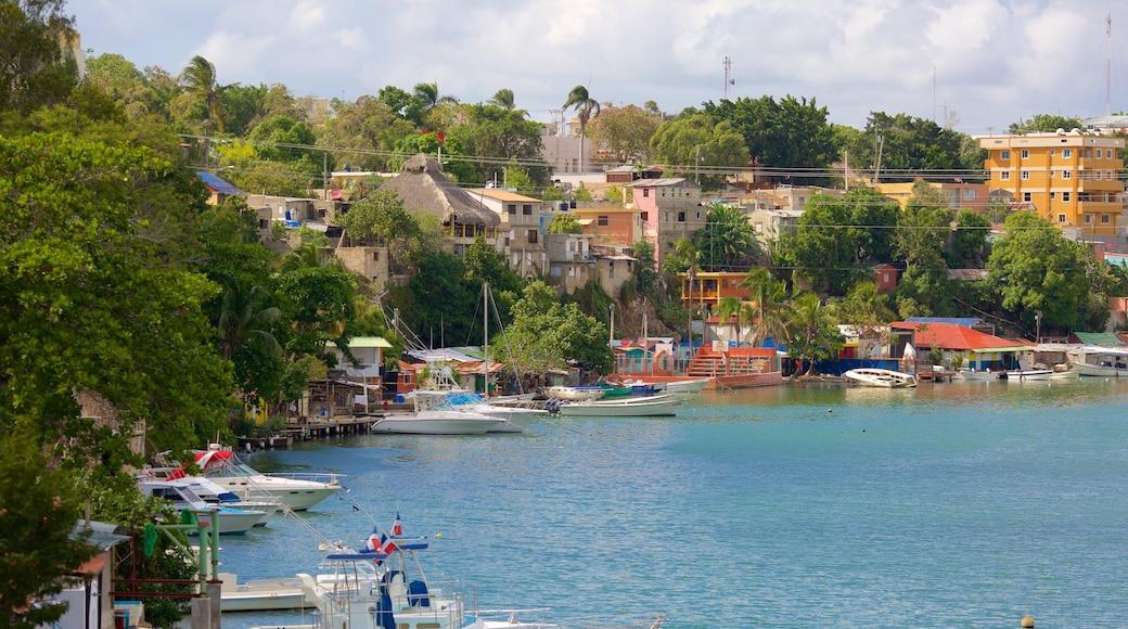 La Romana che include baia e porto e località costiera