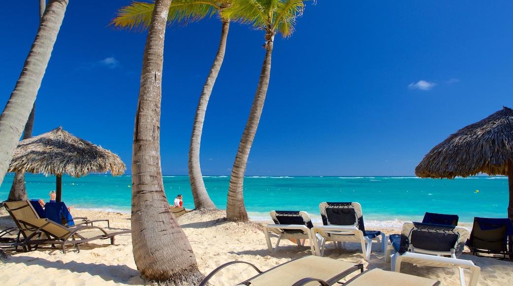 Praia de Cortecito mostrando uma praia e cenas tropicais