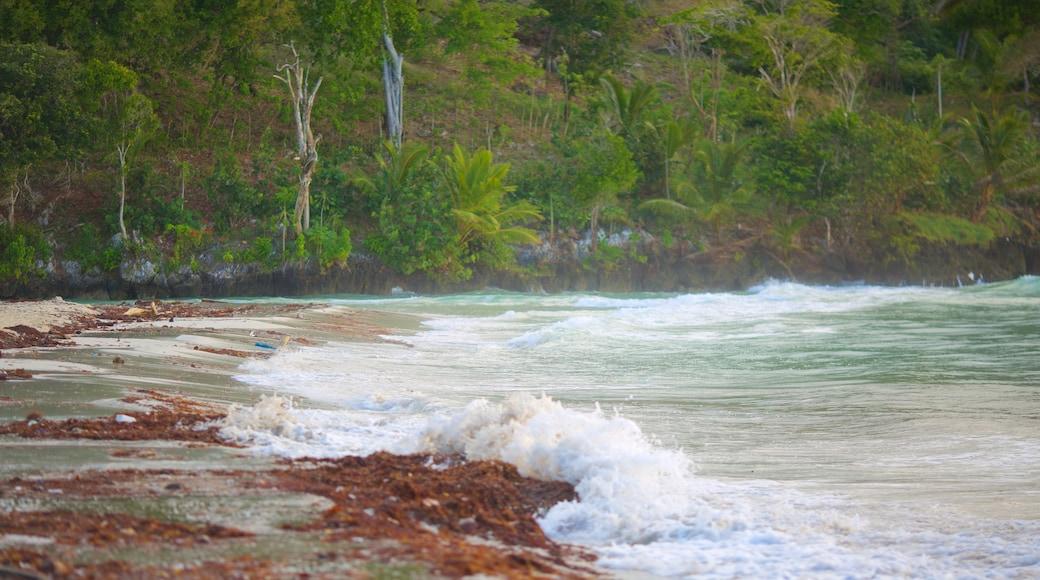 Playa Rincon das einen allgemeine Küstenansicht