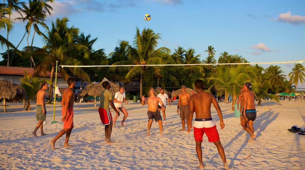 République dominicaine mettant en vedette plage aussi bien que petit groupe de personnes