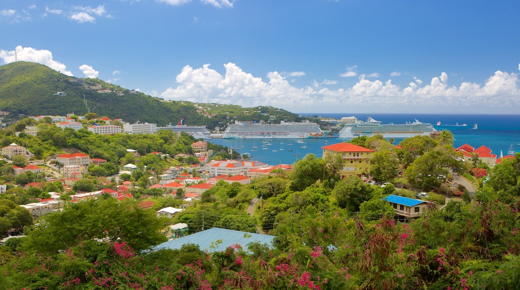 Charlotte Amalie showing a coastal town and general coastal views