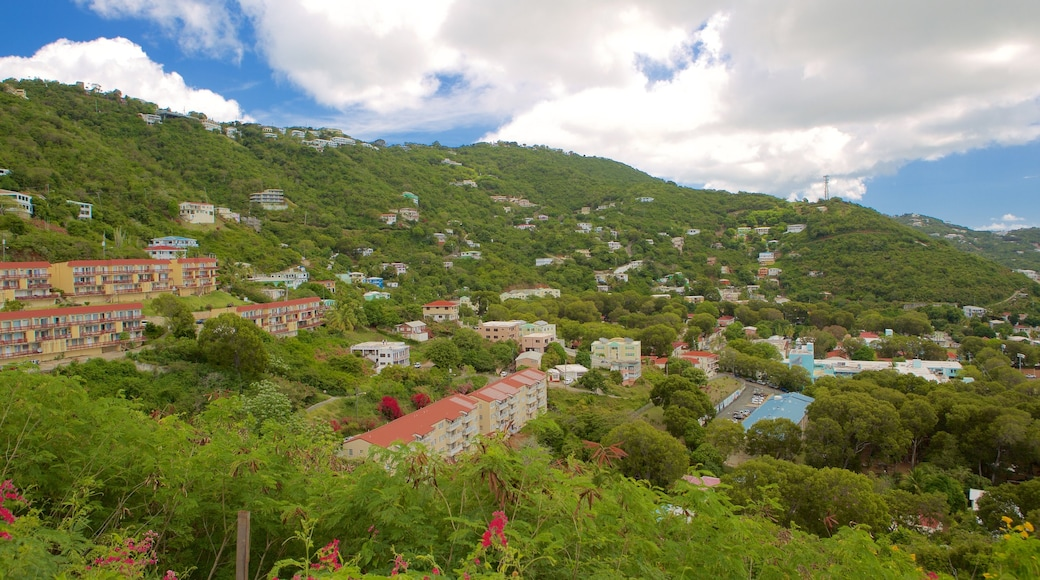 Charlotte Amalie featuring a coastal town and tranquil scenes