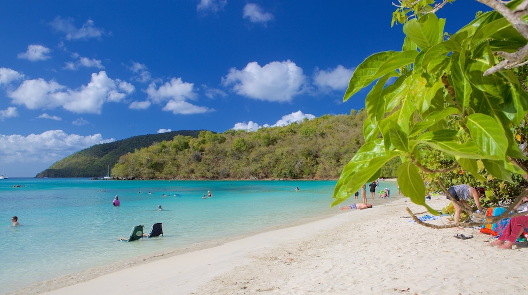 Maho Beach which includes tropical scenes and a beach