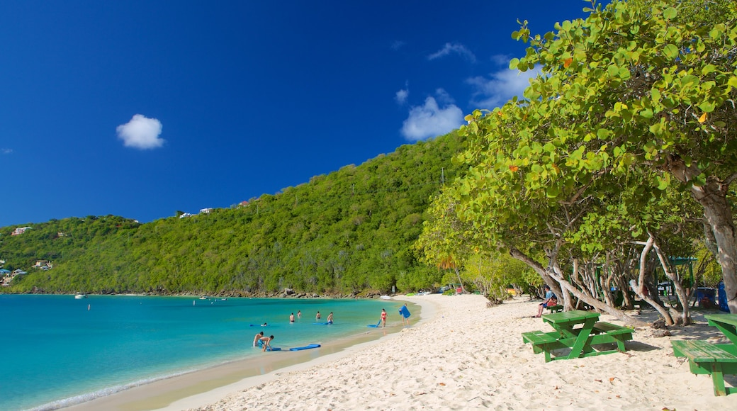 Magens Bay which includes a beach