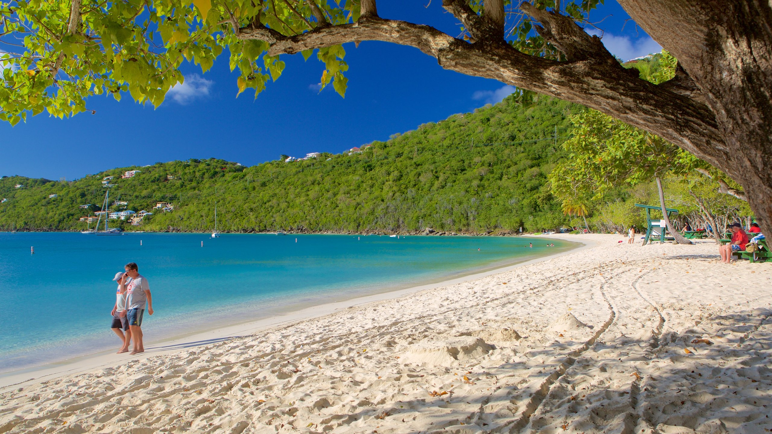 Magens Bay Beach, St. Thomas, U.S. Virgin Islands