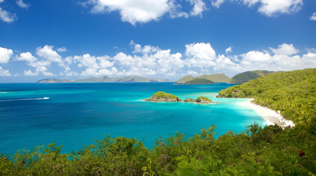 Trunk Bay which includes general coastal views