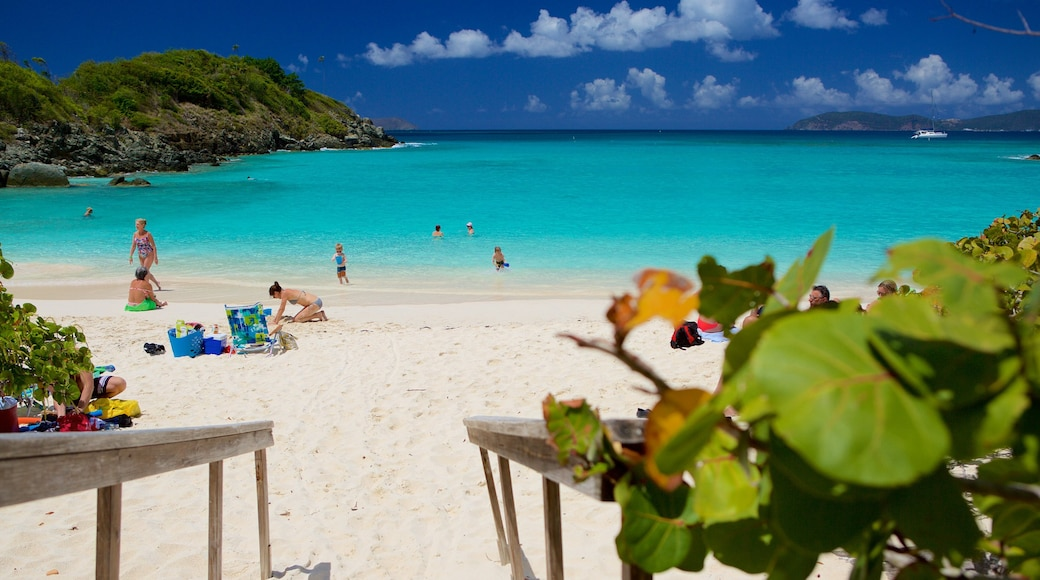 Trunk Bay showing a sandy beach, tropical scenes and a bay or harbor