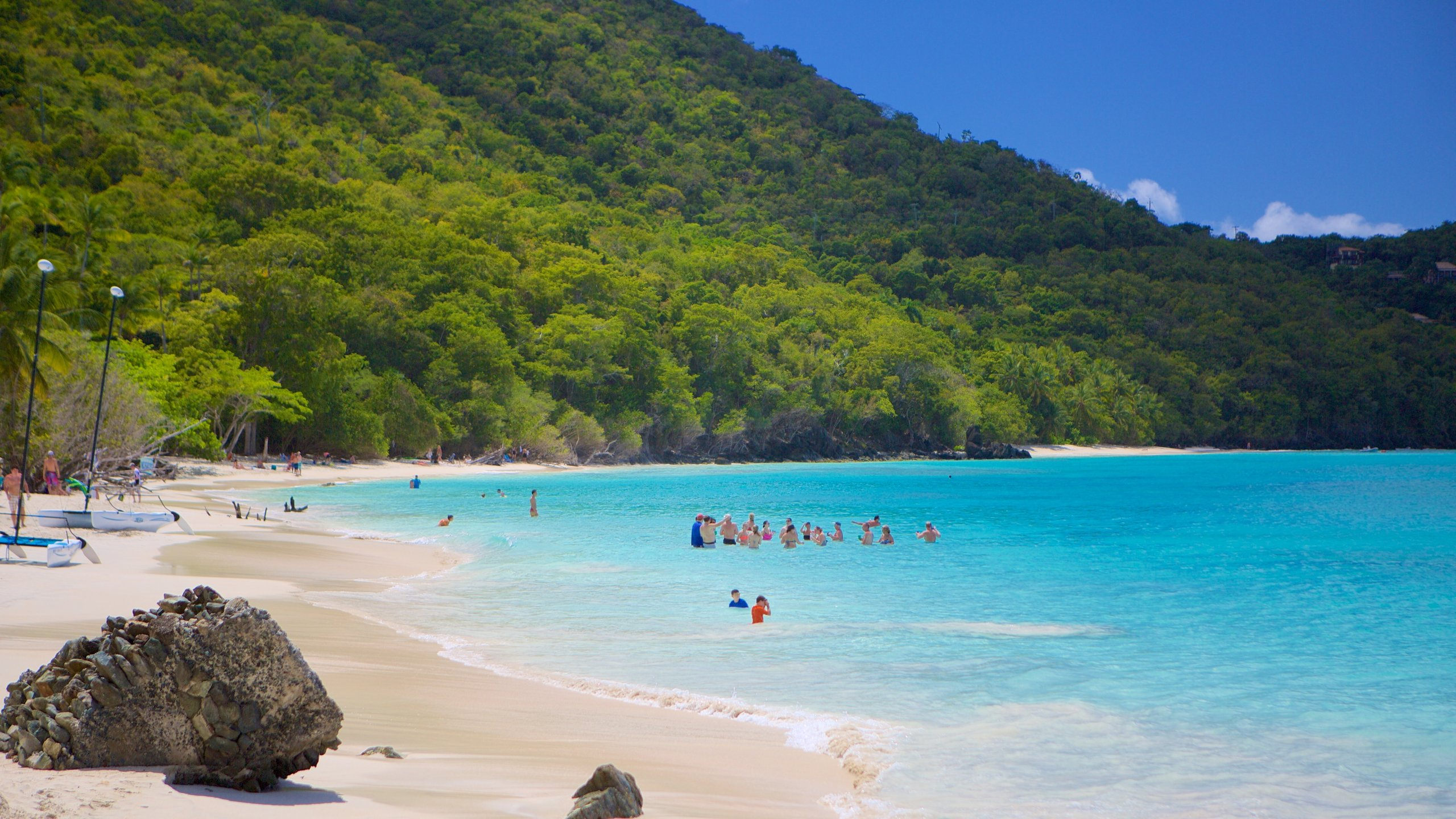 See interesting fish and coral as you snorkel in the pristine waters off this beautiful bay, which is also home to plantation ruins that shed light on St. John's past.