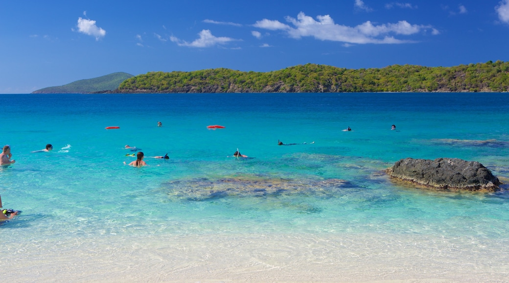 Coki Beach featuring a sandy beach, swimming and tropical scenes
