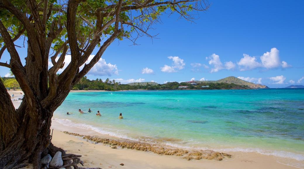 Sapphire Beach featuring a beach and tropical scenes