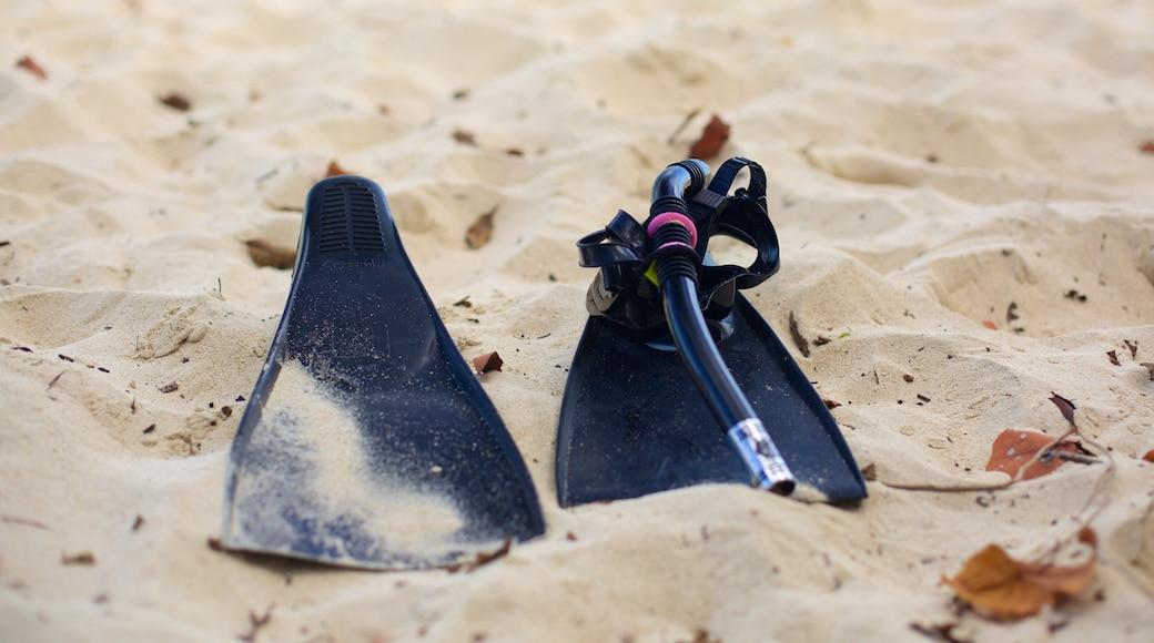 Honeymoon Beach caracterizando snorkel