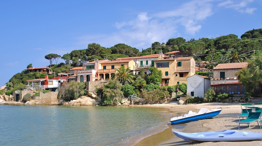 Elba Island featuring a coastal town and a beach