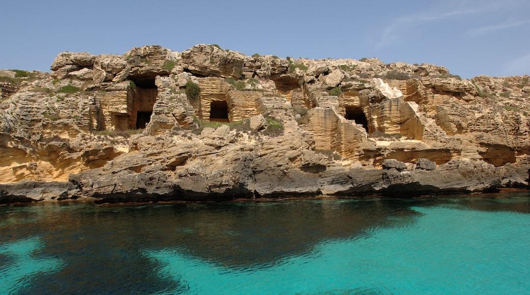 Favignana montrant côte rocheuse et patrimoine historique