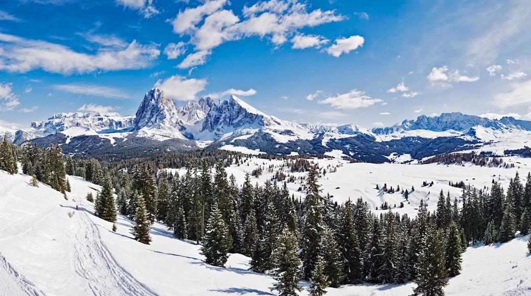 Bozen mit einem Landschaften, Schnee und Berge