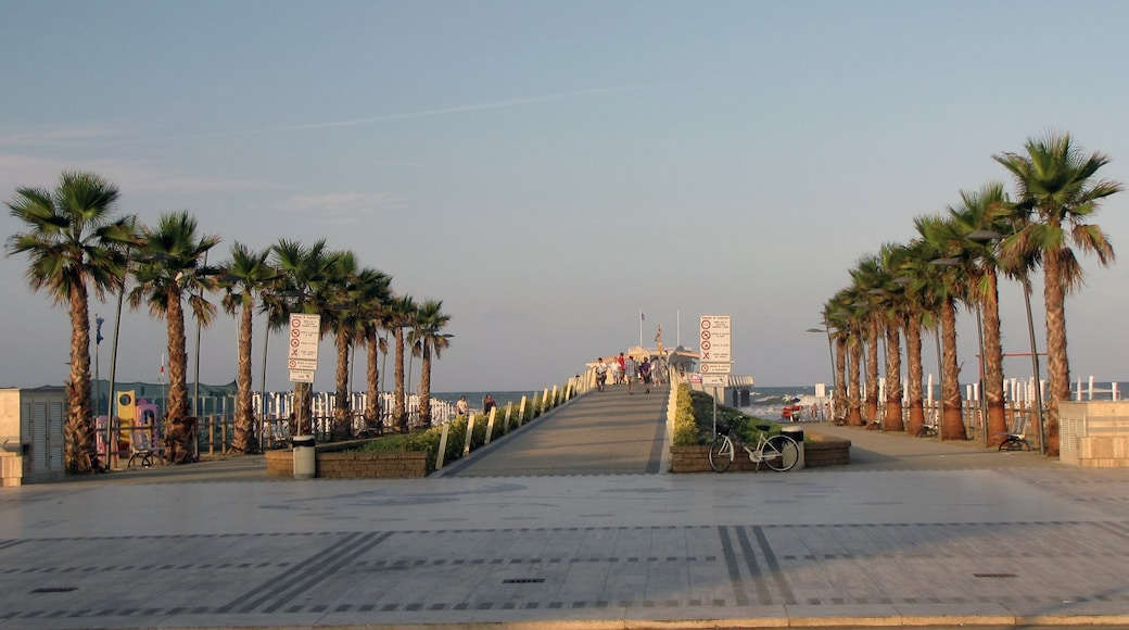 Lido di Camaiore showing general coastal views