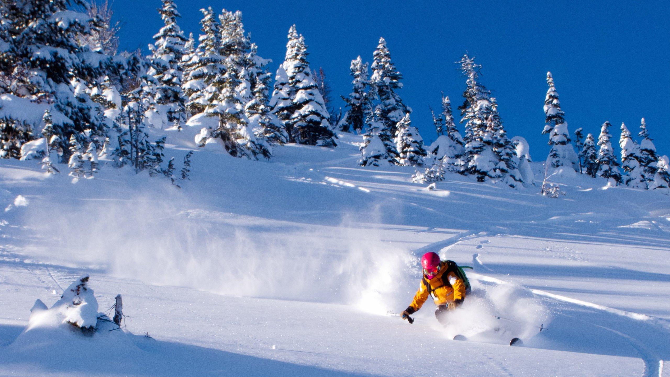 Kicking Horse Mountain Resort, Golden, British Columbia, Canada